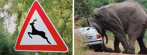 Тема 16. Несоблюдение требований, предписанных дорожными знаками или разметкой проезжей части дороги. 03